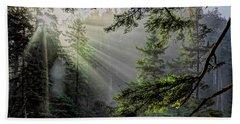 Rays Through An Oregon Rain Forest Beach Towel