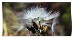 Ready To Fly... Salsify Seeds Beach Towel