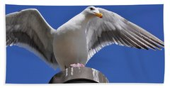 Ready To Soar Beach Towel