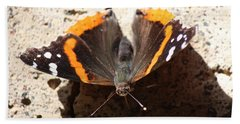 Red Admiral Close Beach Towel