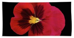 Red And Black Pansy Beach Towel