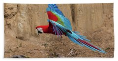 Red-and-green Macaw Beach Towel