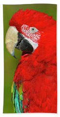 Beach Sheet featuring the photograph Red And Green by Tony Beck