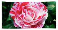 Red And Pink Floral Candy Rose Garden 490 Beach Sheet