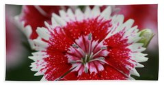 Red And White Flower Beach Towel