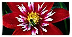 Red And White Flower With Bee Beach Sheet