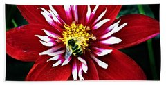 Red And White Flower With Bee Beach Towel