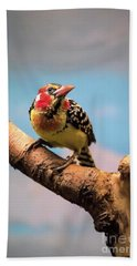 Red And Yellow Barbet Beach Towel