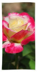 Red And Yellow Rose Beach Towel