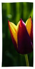 Red And Yellow Tulip Beach Towel