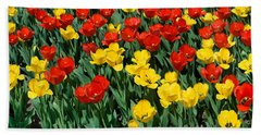 Red And Yellow Tulips  Naperville Illinois Beach Sheet
