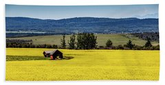Red Barns In A Sea Of Canola Beach Towel