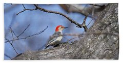 Beach Towel featuring the photograph Red-bellied Woodpecker 1134 by Michael Peychich
