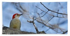 Beach Towel featuring the photograph Red-bellied Woodpecker 1137 by Michael Peychich