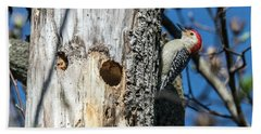 Red-bellied Woodpecker At His Home Beach Towel