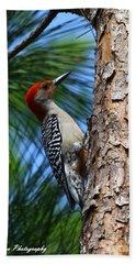 Red-bellied Woodpecker Beach Sheet