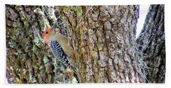 Beach Sheet featuring the photograph Red-bellied Woodpecker By Bill Holkham by Bill Holkham