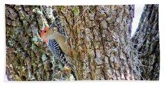 Red-bellied Woodpecker By Bill Holkham Beach Sheet by Bill Holkham