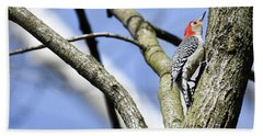 Red-bellied Woodpecker Beach Towel by Gary Wightman