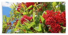 Beach Towel featuring the photograph Red Berries, Blue Skies by D K Wall