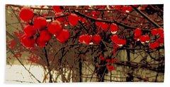 Red Berries In Winter Beach Towel by Susan Lafleur