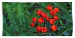 Red Berries Beach Sheet