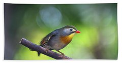 Red Billed Leiothrix Beach Towel