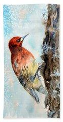 Red-breasted Sapsucker Beach Sheet