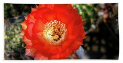 Red Cactus Bloom Beach Towel