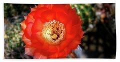 Red Cactus Bloom Beach Sheet