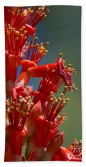 Red Cactus Flower 1 Beach Towel
