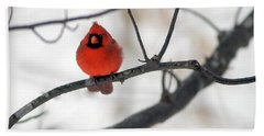 Beach Towel featuring the photograph Red Cardinal In Snow by Marie Hicks