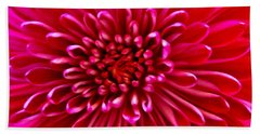 Red Chrysanthemum Beach Sheet