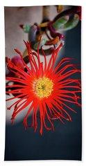 Red Crab Flower Beach Towel