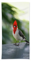 Red Crested Cardinal Bird Standing On A Railing Beach Towel