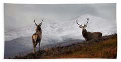Red Deer Stags Beach Towel
