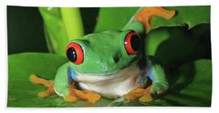 Red Eyed Tree Frog Beach Towel