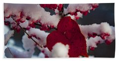 Red Fall Leaf On Snowy Red Berries Beach Towel
