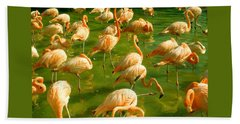 Red Florida Flamingos In Green Water Beach Towel