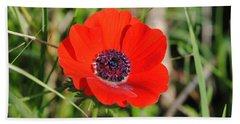 Red Anemone Coronaria 4 Beach Sheet