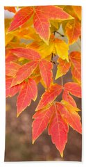 Red Foliage On Farmland In Vermont Beach Towel