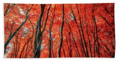 Red Forest Of Sunlight Beach Towel