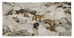 Beach Towel featuring the photograph Red Fox Family by Andrea Silies