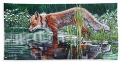 Red Fox Reflecting Beach Towel