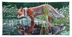 Red Fox Reflecting Beach Towel