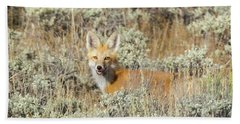 Red Fox In Sage Brush Beach Towel