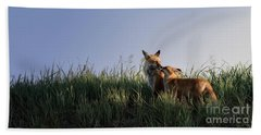 Red Fox Morning Beach Towel