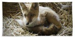 Red Fox Beach Sheet