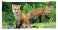 Red Foxes In The Rain Beach Towel