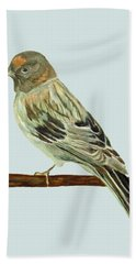 Red-fronted Serin Beach Towel